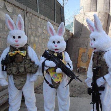 Bunny Squad
