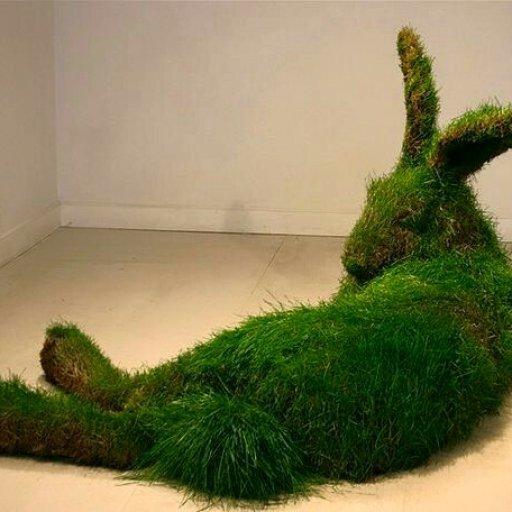Rabbits (412)