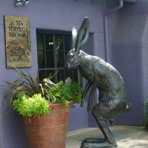 Rabbits (418)