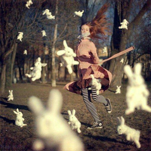Rabbits (427)