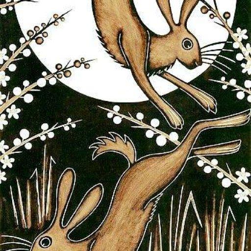 Rabbits (446)